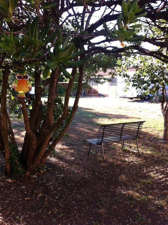 jardin (4)